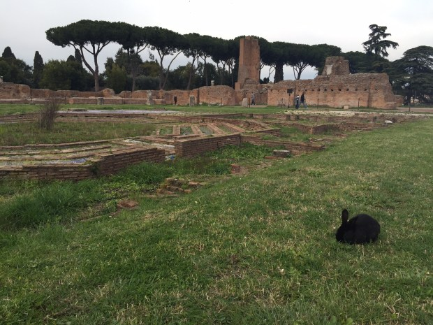 A magical encounter at the Palatine Hill.