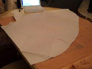 Now I just need to iron my actual paper pattern...joy