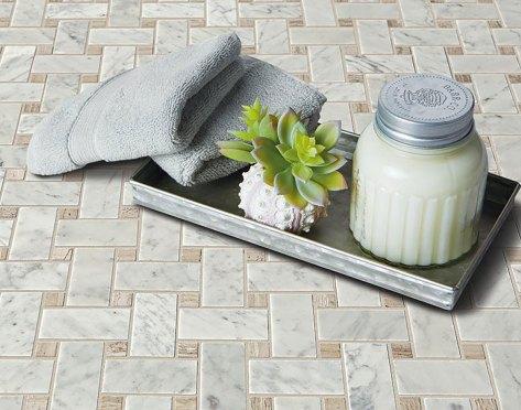 Daintree Exotic Mosaics