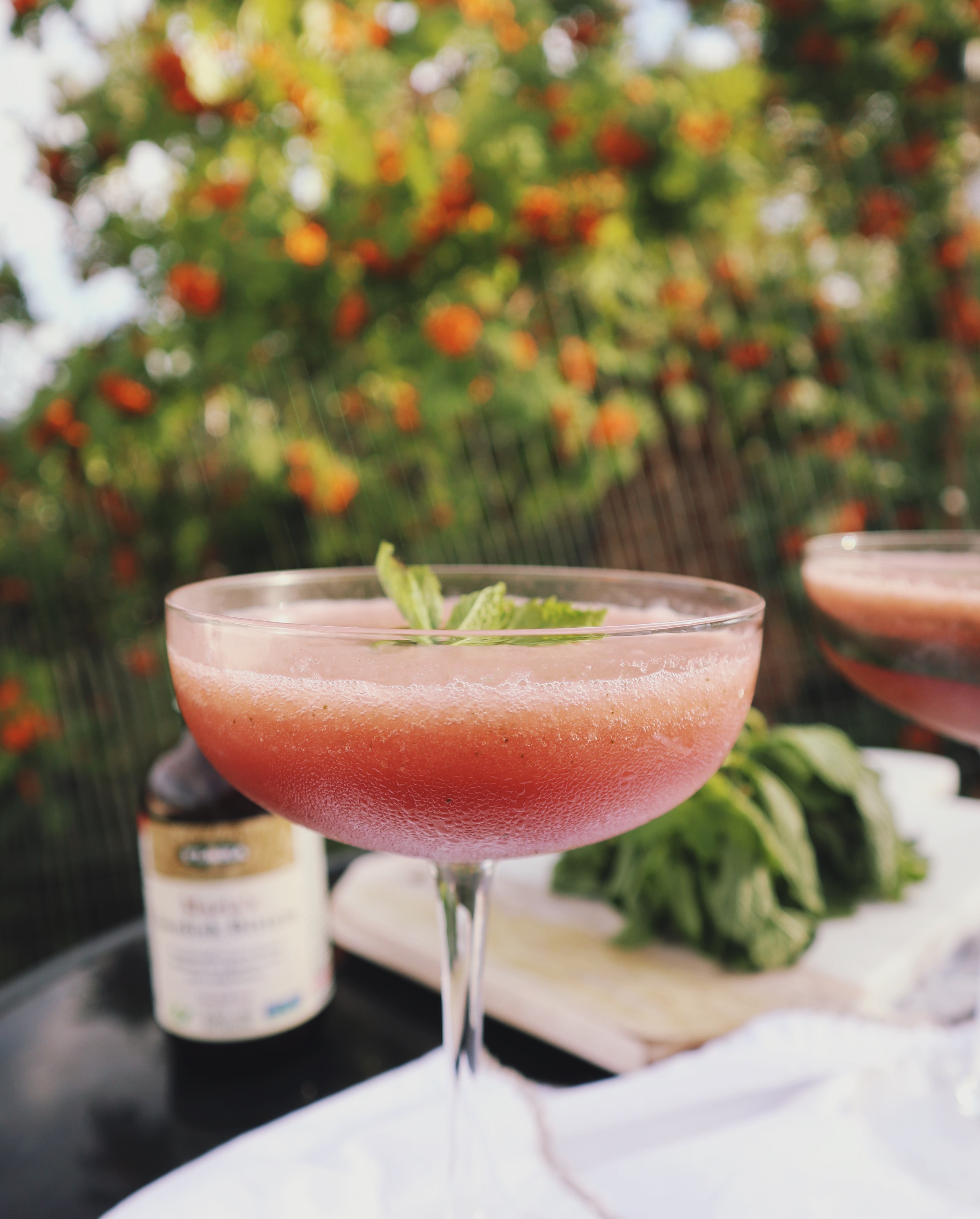 Swedish Bitters Summer Cocktails