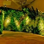 PLANTAS EN VERTICAL, UNA TENDENCIA MUY ACTUAL