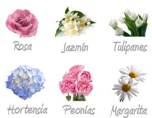 Flores para Bodas en Patricia López Diseño Floral - Florsitería en Añover de Tajo