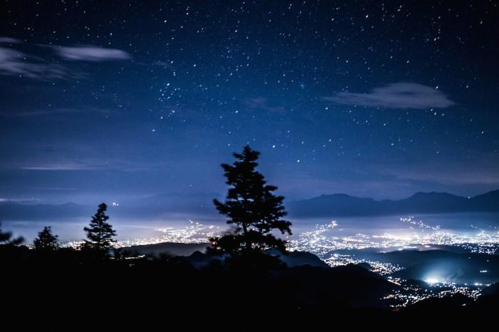 上田市の夜景と一本の木