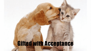 Gifted with Acceptance