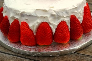 Diferencias entre la nata y la nata vegetal4