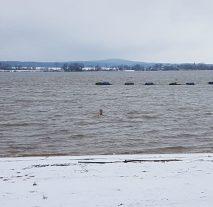 Auch bei Schnee und Eis geht Max im See baden