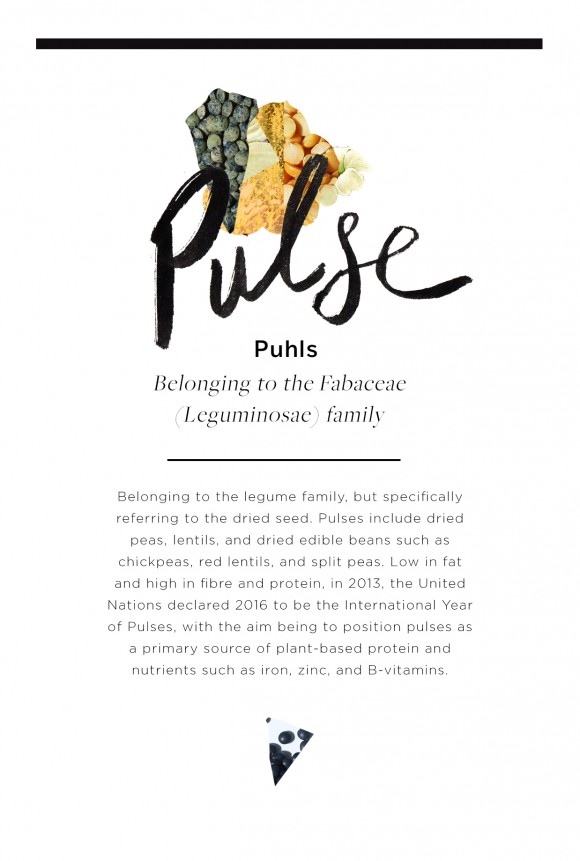 Post image for Wellness Encyclopedia: Everything You Ever Wanted to Know About Pulses + 3 Healthy Recipes
