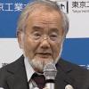 """ノーベル賞!大隅良典さんの解明した""""オートファジー""""を簡単に説明"""