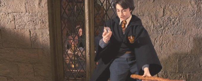 ハリーがシーカーに