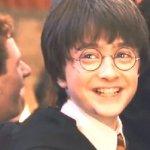 『ハリー・ポッターと賢者の石』シリーズ1 あらすじをまとめてみた。解説あり。(ネタバレ)