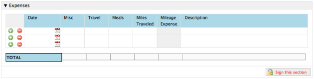 Expense Report using Table Control