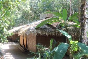 Pretty fancy hut!