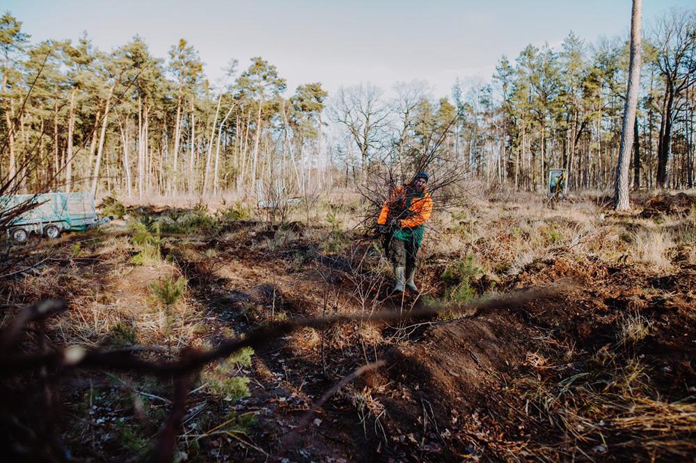 Auf dem Weg zum Frittenwerk-Wald
