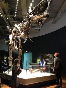 Exposition à Te Papa Museum