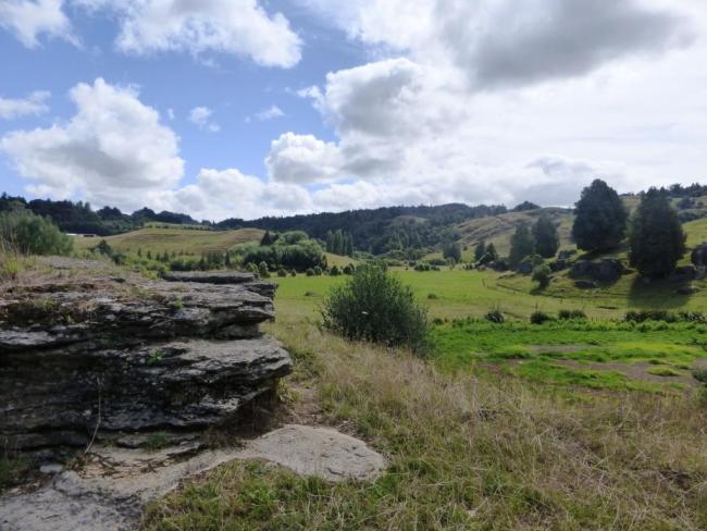 Région de Waitomo Nouvelle Zelande