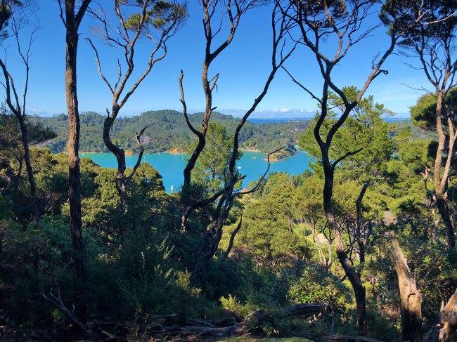 Vue des crètes Kawau Island