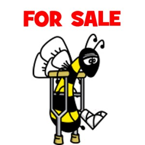 Disabled Bee Sold