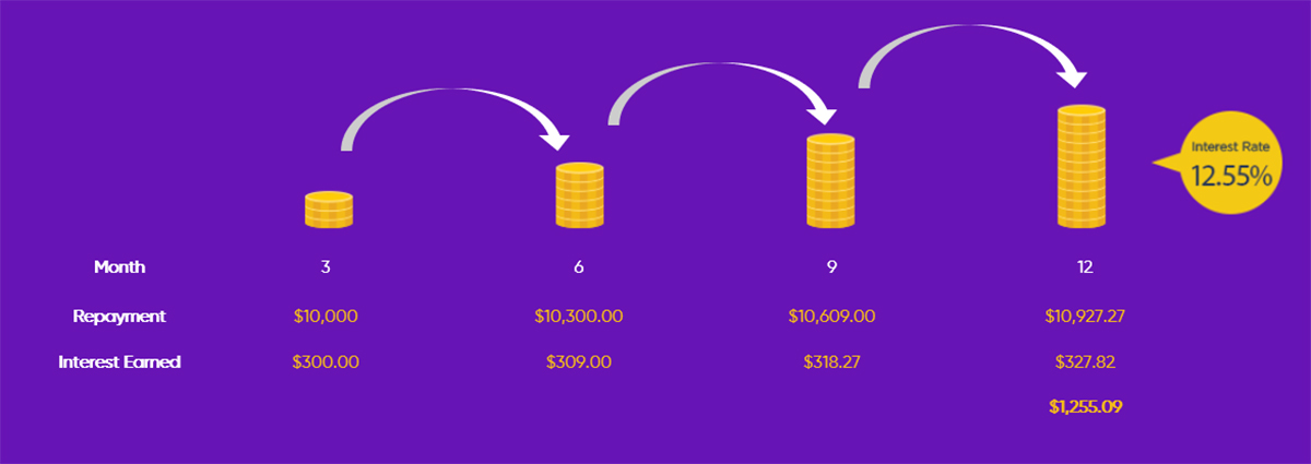 Reinvestment Illustration