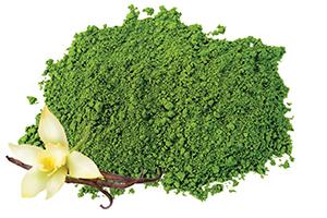 Vanilla Matcha Green Tea Powder