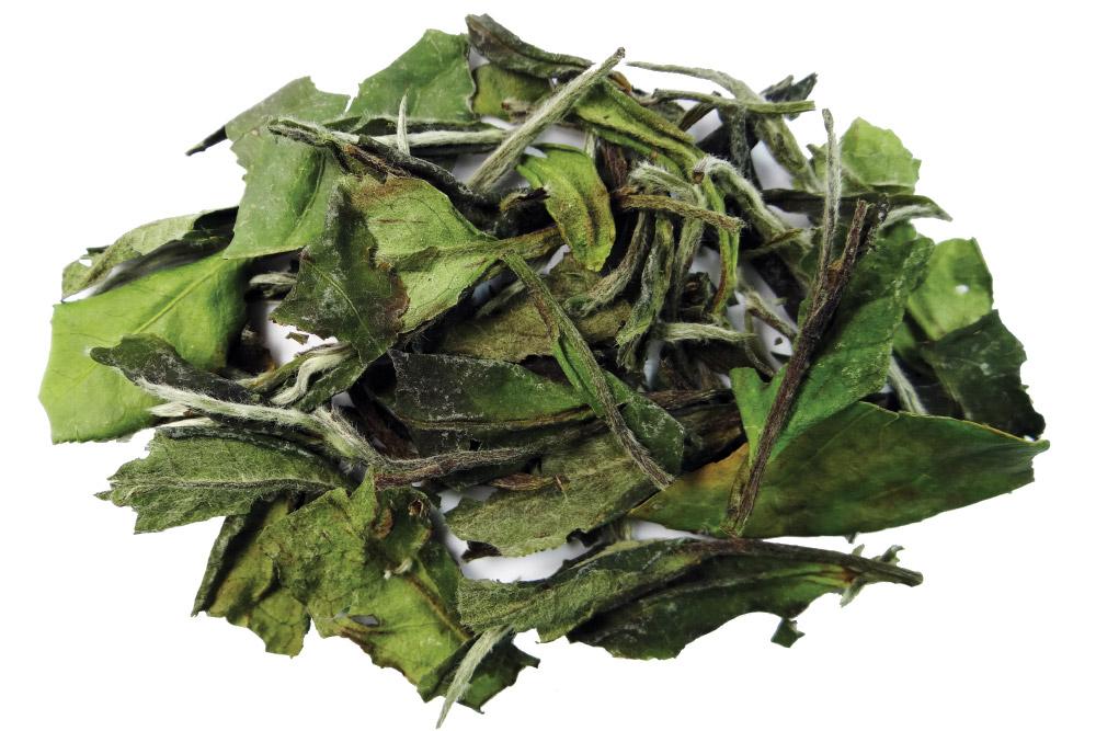 Bai Mu Dan White Tea Loose Leaf Tea