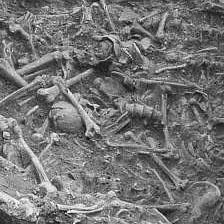 Das Massaker von Talheim - Skelettreste