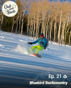 A splitboarder rides down a slope with aspens in the background.