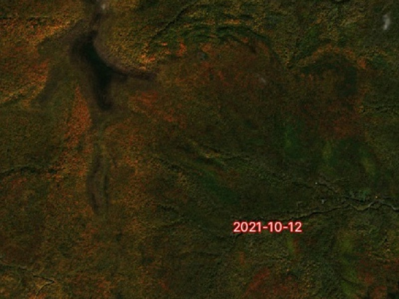 Gaia GPS' Fresh Sat - Recent map layer showing fall colors in the foliage