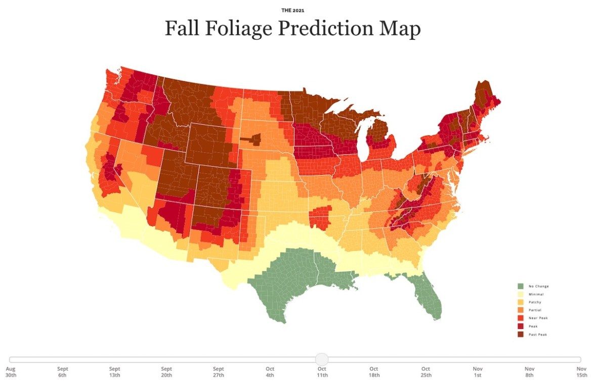 Fall foliage prediction map of the United States