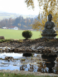Gehmeditation mit Thomas in Hohenau