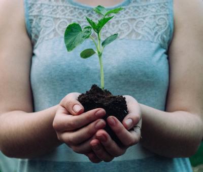 5 Cara Hidup Minimalis ini Jadi Solusi Jaga Bumi Juga, lho