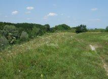 Palmanova: town wall track
