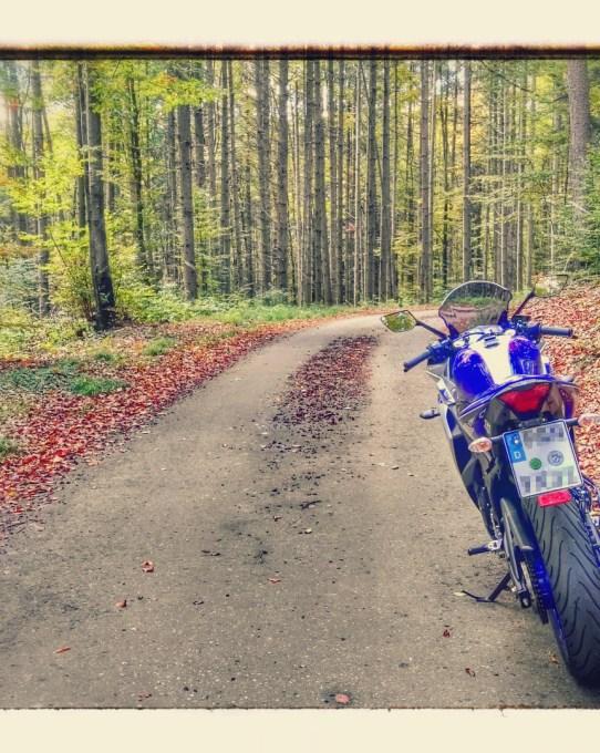 Herbstrunde