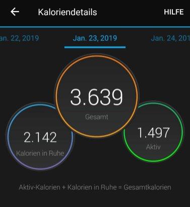 Garmin Vivosport Kalorienauswertung