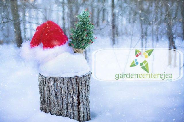 feliz-navidad-garden-center-ejea