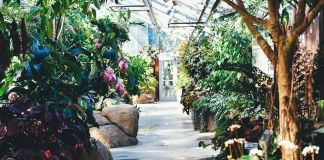 jardín victoriano
