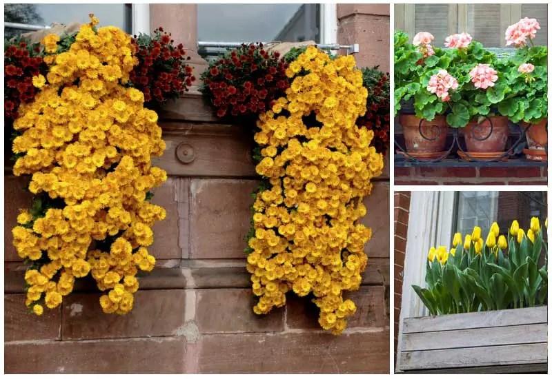 32 Breathtaking Flower Box Ideas Garden Lovers Club