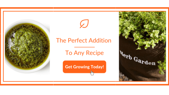 Gardenuity Spouse Recipes