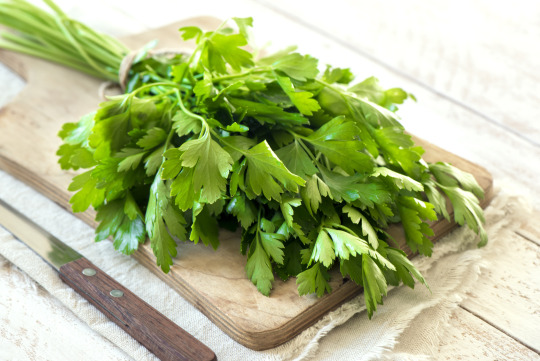 carrots, mint, and parsley