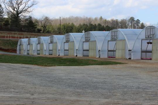 Organic Produce Greenhouses