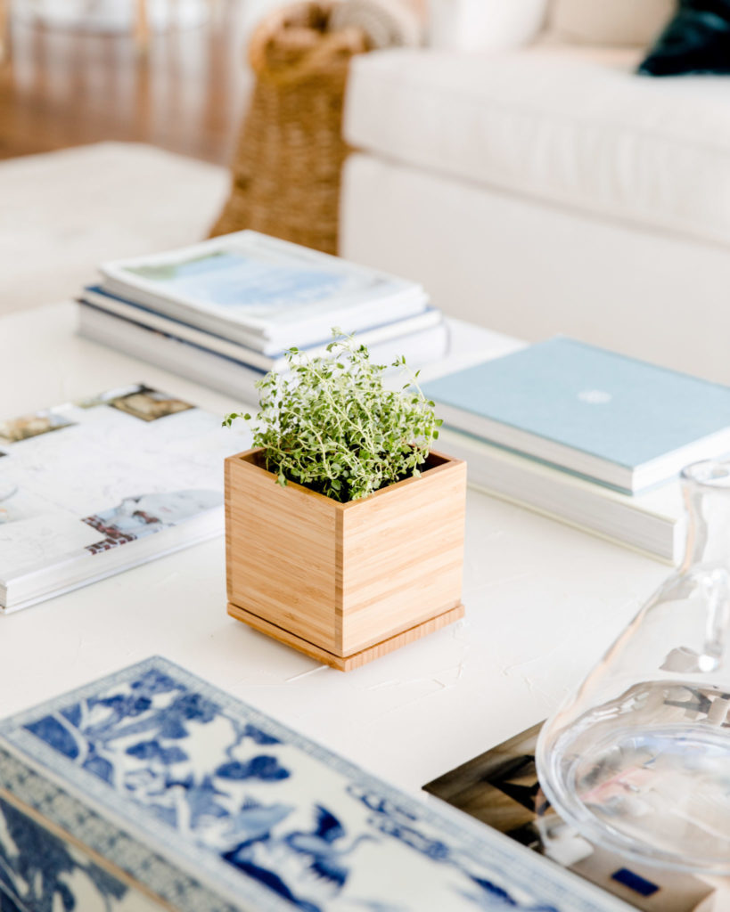 decorating with herbs on coffee table