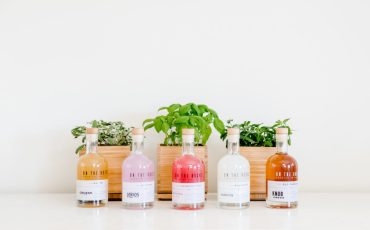 On the Rocks Full Selection with Gardenuity plants