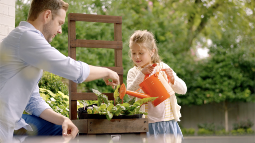 Benefits of Container Garden