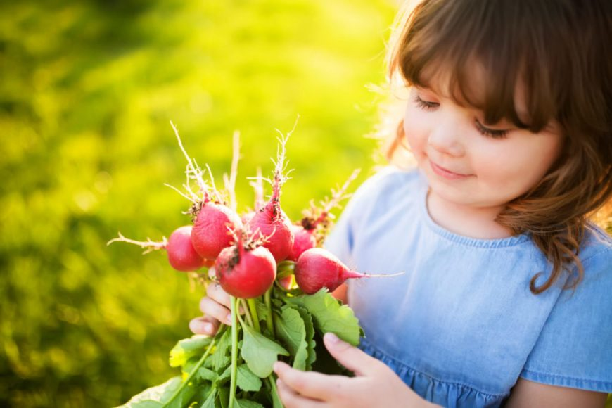 Child Gardening Holding Radishes