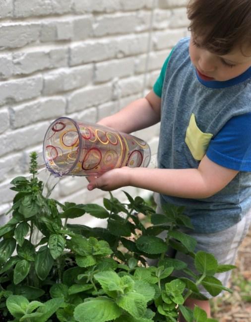 Summer Gardening Watering