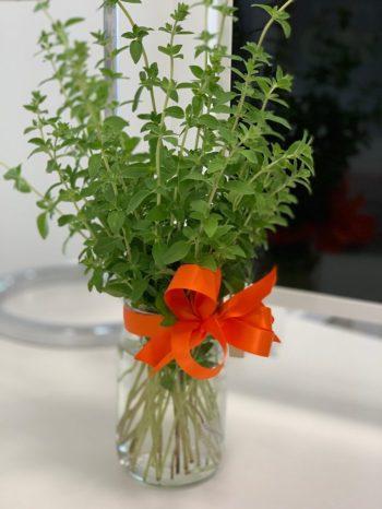 Keep Herbs Fresh In Water