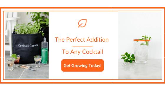 Basil and Cucumber rum cocktail