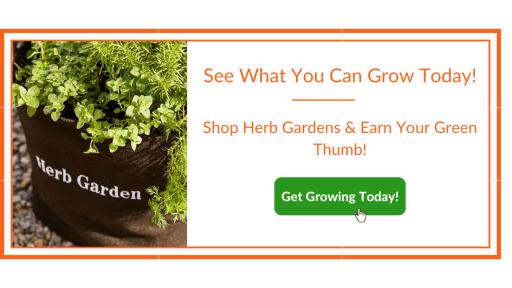 Herb Garden Wellness Benefits