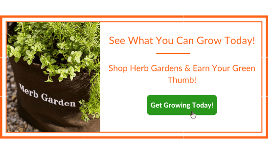 Herbs for Sleep Garden Kit Banner