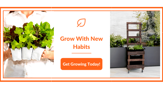 Get Growing Today!