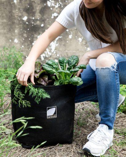 Vegetable Gardening Subscription Box